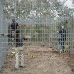 Volunteers building habitats