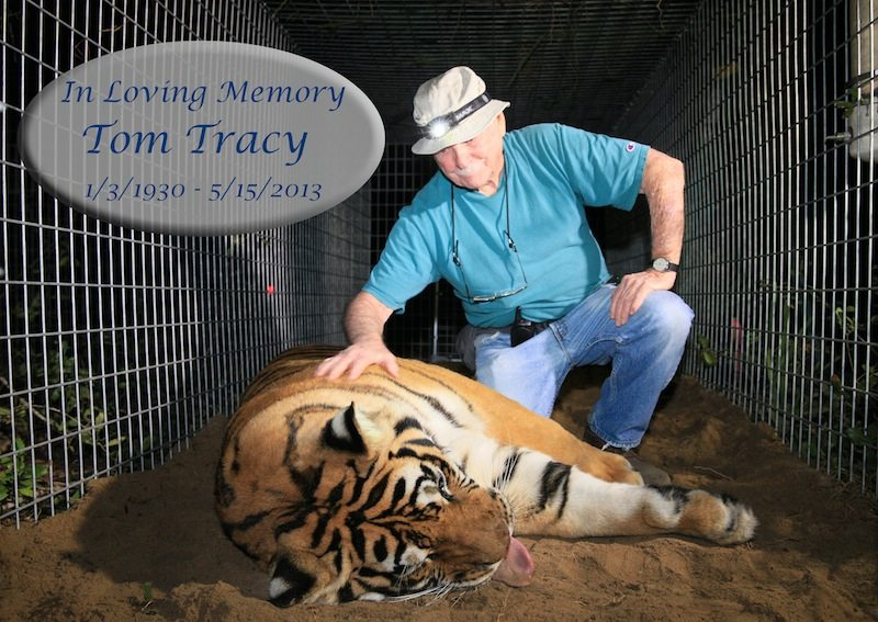 In Memory of Tom Tracy