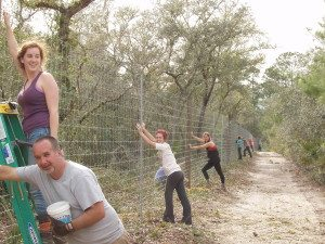 Volunteers building perimeter fence